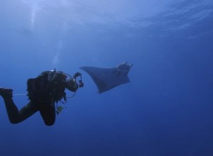 Action Grantee: Danny Copeland / Making the Mini Manta of Maria (Short Film) / Pew Charitable Trust