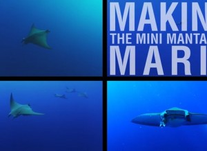 Danny Copeland: Making the Mini Mantas of Maria (Full Film)